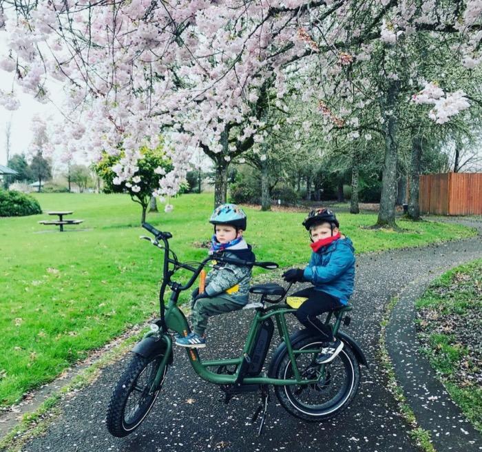 radrunner-family-bike